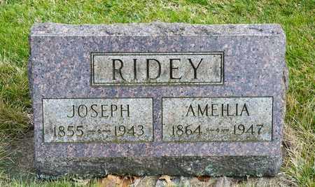 RIDEY, AMEILIA - Richland County, Ohio | AMEILIA RIDEY - Ohio Gravestone Photos