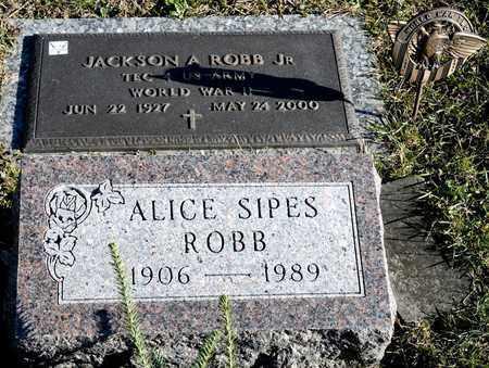 SIPES ROBB, ALICE - Richland County, Ohio | ALICE SIPES ROBB - Ohio Gravestone Photos
