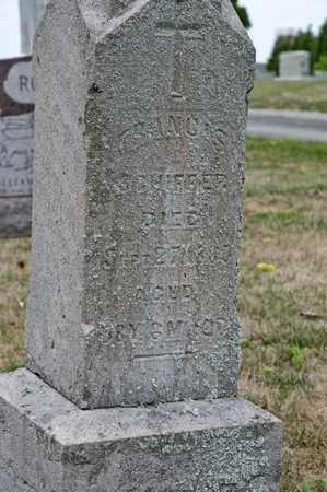 SCHIFFER, FRANCIS - Richland County, Ohio | FRANCIS SCHIFFER - Ohio Gravestone Photos