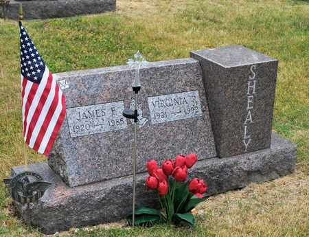 SHEALY, JAMES F - Richland County, Ohio | JAMES F SHEALY - Ohio Gravestone Photos