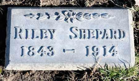 SHEPARD, RILEY - Richland County, Ohio | RILEY SHEPARD - Ohio Gravestone Photos