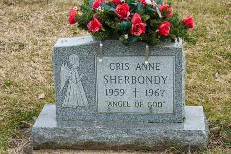 SHERBONDY, CRIS ANNE - Richland County, Ohio | CRIS ANNE SHERBONDY - Ohio Gravestone Photos