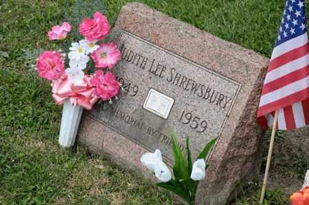 SHREWSBURY, JUDITH LEE - Richland County, Ohio | JUDITH LEE SHREWSBURY - Ohio Gravestone Photos