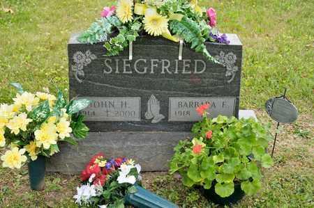 SIEGFRIED, JOHN H - Richland County, Ohio | JOHN H SIEGFRIED - Ohio Gravestone Photos
