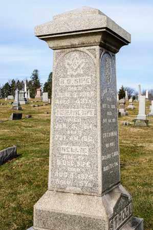 SIPE, CATHERINE - Richland County, Ohio | CATHERINE SIPE - Ohio Gravestone Photos