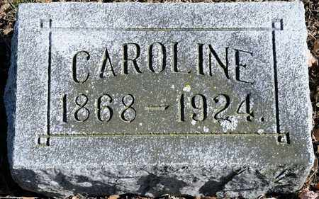 SMALTZ, CAROLINE - Richland County, Ohio | CAROLINE SMALTZ - Ohio Gravestone Photos
