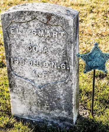 SMART, ELI - Richland County, Ohio   ELI SMART - Ohio Gravestone Photos