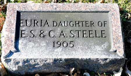 STEELE, EURIA - Richland County, Ohio | EURIA STEELE - Ohio Gravestone Photos
