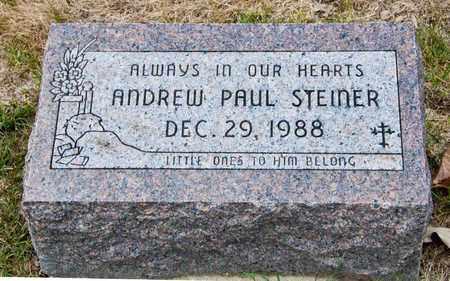 STEINER, ANDREW PAUL - Richland County, Ohio | ANDREW PAUL STEINER - Ohio Gravestone Photos