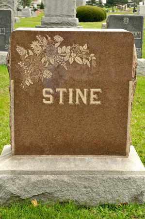 MOORE STINE, MARY - Richland County, Ohio | MARY MOORE STINE - Ohio Gravestone Photos
