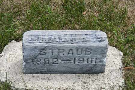 STRAUB, CHARLIE - Richland County, Ohio   CHARLIE STRAUB - Ohio Gravestone Photos