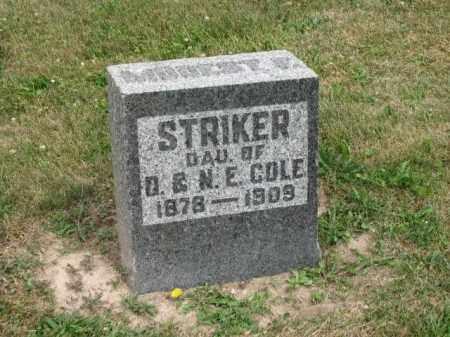 STRIKER, MODEST F. - Richland County, Ohio | MODEST F. STRIKER - Ohio Gravestone Photos