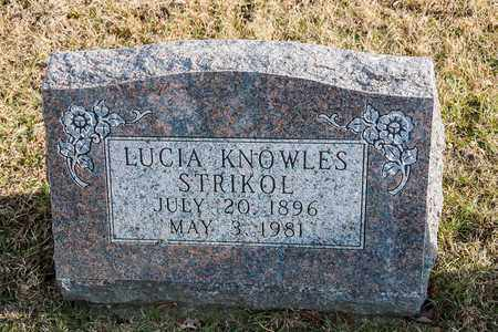 KNOWLES STRIKOL, LUCIA - Richland County, Ohio | LUCIA KNOWLES STRIKOL - Ohio Gravestone Photos