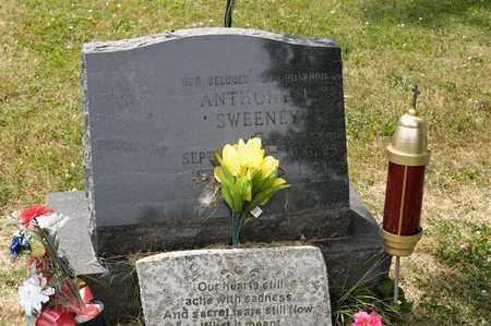 SWEENEY, ANTHONY - Richland County, Ohio | ANTHONY SWEENEY - Ohio Gravestone Photos
