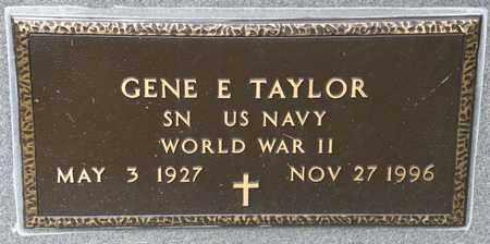 TAYLOR, GENE E - Richland County, Ohio | GENE E TAYLOR - Ohio Gravestone Photos