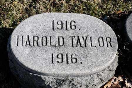 TAYLOR, HAROLD - Richland County, Ohio | HAROLD TAYLOR - Ohio Gravestone Photos