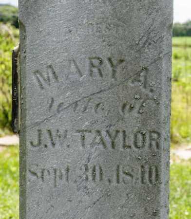 TAYLOR, MARY A - Richland County, Ohio   MARY A TAYLOR - Ohio Gravestone Photos