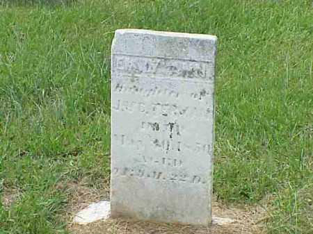 TERMAN, EMILY ANN - Richland County, Ohio | EMILY ANN TERMAN - Ohio Gravestone Photos