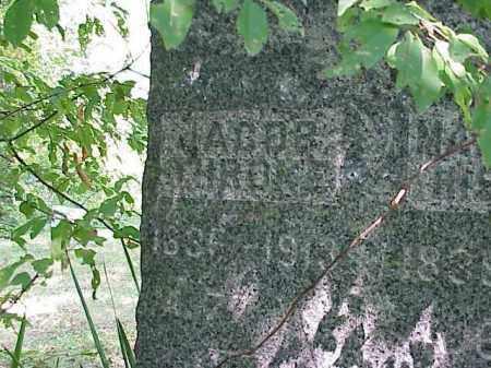 THRONE, JACOB - Richland County, Ohio | JACOB THRONE - Ohio Gravestone Photos