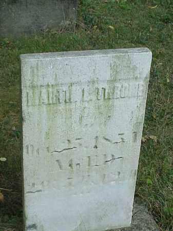 THRONE, MARTIN L. - Richland County, Ohio   MARTIN L. THRONE - Ohio Gravestone Photos