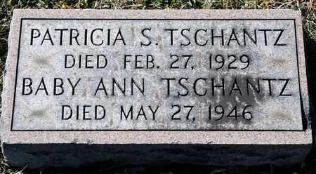 TSCHANTZ, ANN - Richland County, Ohio   ANN TSCHANTZ - Ohio Gravestone Photos