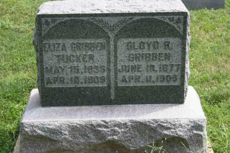 TUCKER, ELIZA - Richland County, Ohio | ELIZA TUCKER - Ohio Gravestone Photos