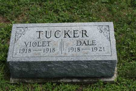 TUCKER, VIOLET - Richland County, Ohio | VIOLET TUCKER - Ohio Gravestone Photos