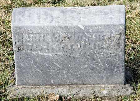 WALTER, ELIZABETH - Richland County, Ohio | ELIZABETH WALTER - Ohio Gravestone Photos