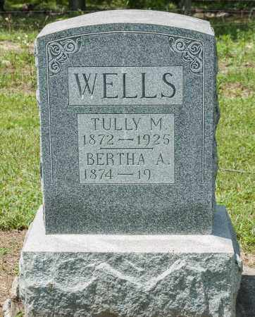 WELLS, TULLY M - Richland County, Ohio | TULLY M WELLS - Ohio Gravestone Photos