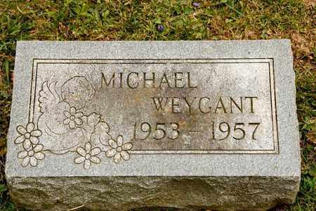 WEYGANT, MICHAEL - Richland County, Ohio | MICHAEL WEYGANT - Ohio Gravestone Photos