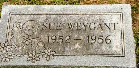 WEYGANT, SUE - Richland County, Ohio   SUE WEYGANT - Ohio Gravestone Photos