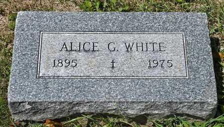 WHITE, ALICE G - Richland County, Ohio | ALICE G WHITE - Ohio Gravestone Photos