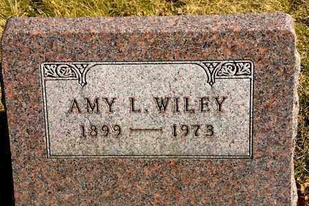 WILEY, AMY L - Richland County, Ohio | AMY L WILEY - Ohio Gravestone Photos