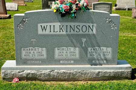WILKINSON, AMELIA E - Richland County, Ohio | AMELIA E WILKINSON - Ohio Gravestone Photos