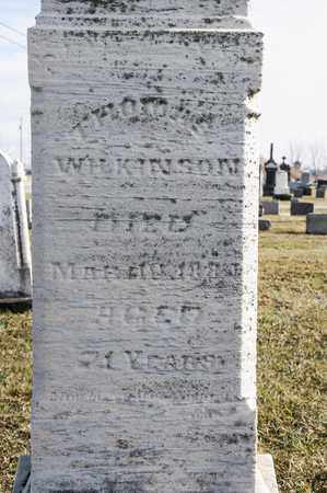 WILKINSON, THOMAS - Richland County, Ohio | THOMAS WILKINSON - Ohio Gravestone Photos