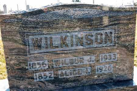 WILKINSON, ALICE I - Richland County, Ohio | ALICE I WILKINSON - Ohio Gravestone Photos
