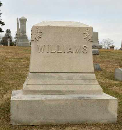 WILLIAMS, BENJAMIN J - Richland County, Ohio | BENJAMIN J WILLIAMS - Ohio Gravestone Photos