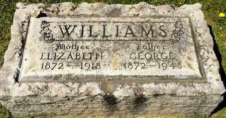 WILLIAMS, GEORGE - Richland County, Ohio | GEORGE WILLIAMS - Ohio Gravestone Photos
