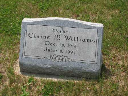 WILLIAMS, ELAINE M. - Richland County, Ohio | ELAINE M. WILLIAMS - Ohio Gravestone Photos