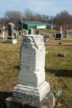 WILLIS, MAMIE - Richland County, Ohio | MAMIE WILLIS - Ohio Gravestone Photos