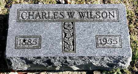 WILSON, CHARLES W - Richland County, Ohio | CHARLES W WILSON - Ohio Gravestone Photos