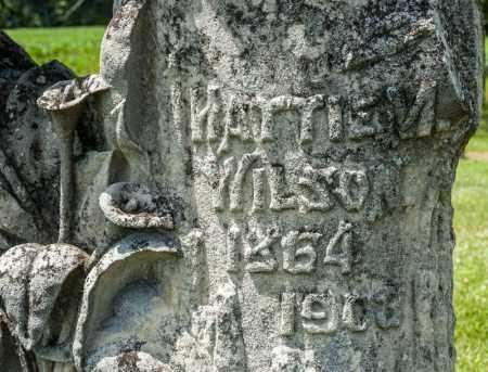 WILSON, HATTIE M - Richland County, Ohio | HATTIE M WILSON - Ohio Gravestone Photos