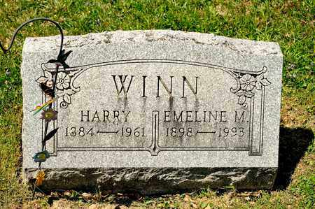 WINN, EMELINE M - Richland County, Ohio | EMELINE M WINN - Ohio Gravestone Photos