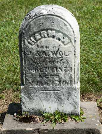 WOLF, HERMAN - Richland County, Ohio | HERMAN WOLF - Ohio Gravestone Photos