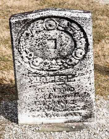 WOOD, JAMES K - Richland County, Ohio | JAMES K WOOD - Ohio Gravestone Photos