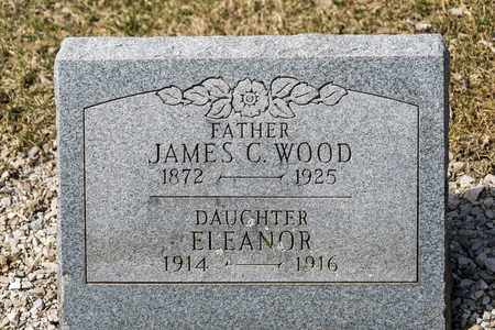 WOOD, JAMES C - Richland County, Ohio | JAMES C WOOD - Ohio Gravestone Photos