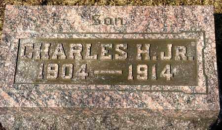 WOOD JR, CHARLES H - Richland County, Ohio | CHARLES H WOOD JR - Ohio Gravestone Photos