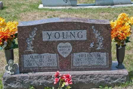 YOUNG, ALBERT J - Richland County, Ohio | ALBERT J YOUNG - Ohio Gravestone Photos