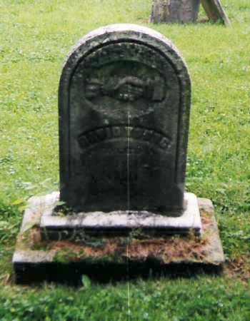 YOUNG, DAVID - Richland County, Ohio | DAVID YOUNG - Ohio Gravestone Photos