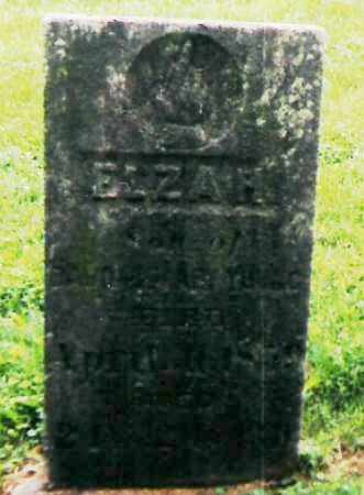 YOUNG, ELZA HENRY - Richland County, Ohio | ELZA HENRY YOUNG - Ohio Gravestone Photos